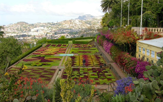 Madeira, Portugal, Island of Flowers