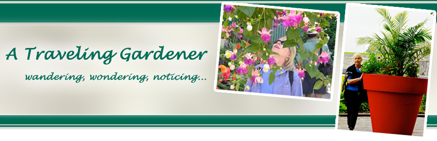 A Traveling Gardener