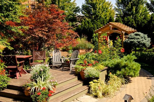 Vander Veer Botanical Park A Traveling Gardener