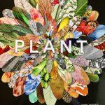 Plant, Exploring The Botanical World