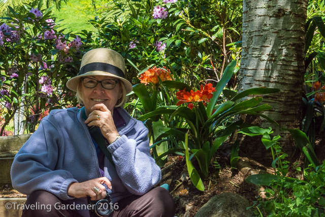 The author at Oakley Garden, Taranaki, NZ