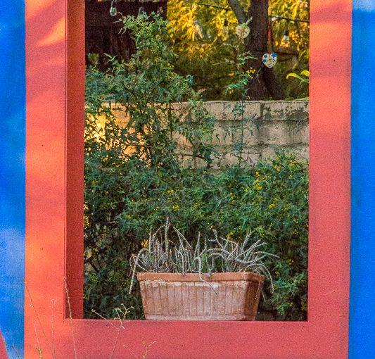 Casa Azul at Tucson Botanical Garden
