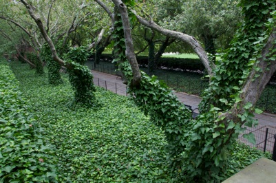 Romantic Gardens Appeal To Our Imaginations With Winding Paths Leading To A  Well Placed Bench, Shaded By An Ivy Covered Arbor.