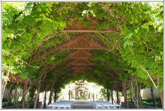 Botanical Garden, Albuquerque | A Traveling Gardener
