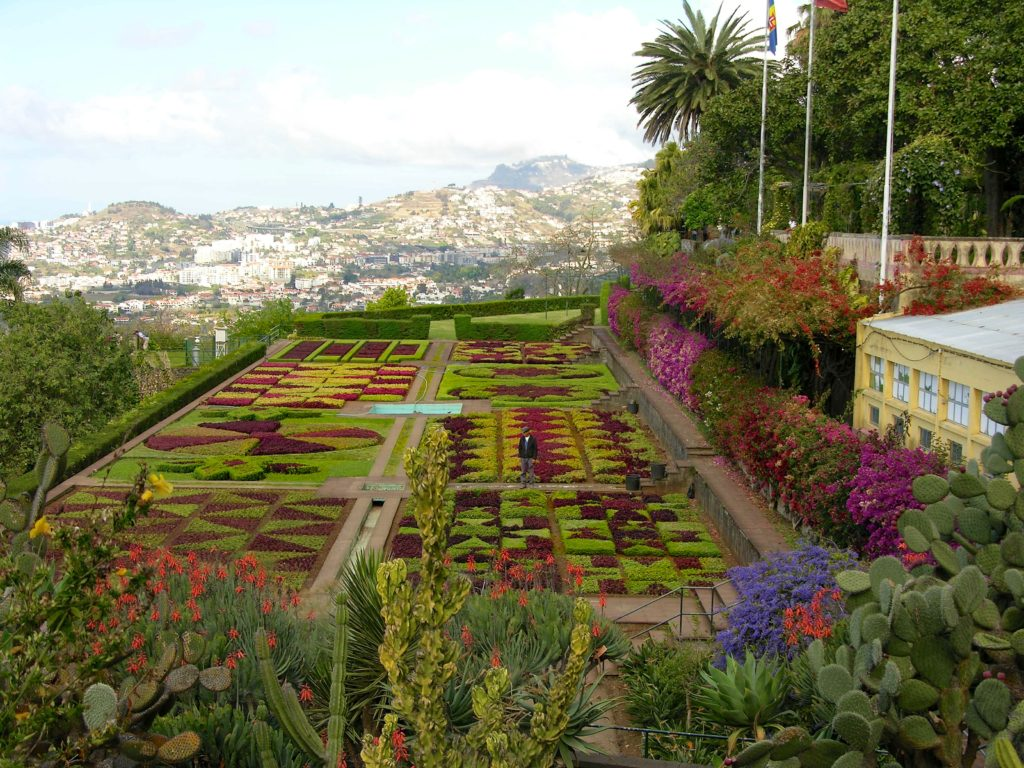 Madeira, Portugal, Island of Flowers | A Traveling Gardener