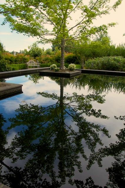Bosque Garden