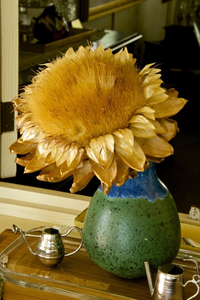 A golden bloom