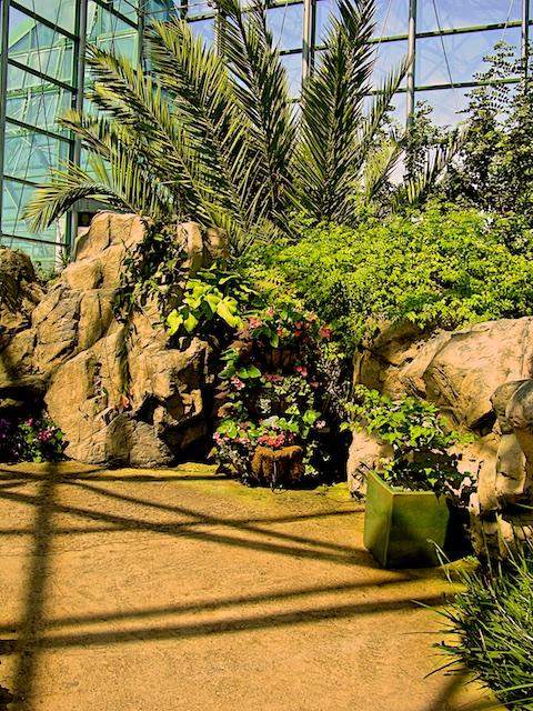 Interior view of Rio Grande Botanic Conservatory