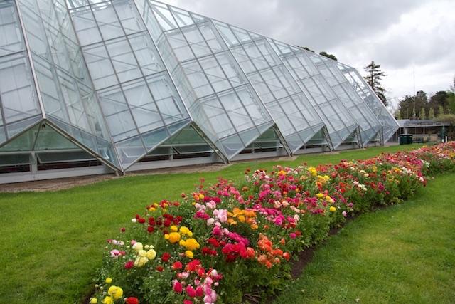 Ballarat Garden Conservatory, Victoria, Australia