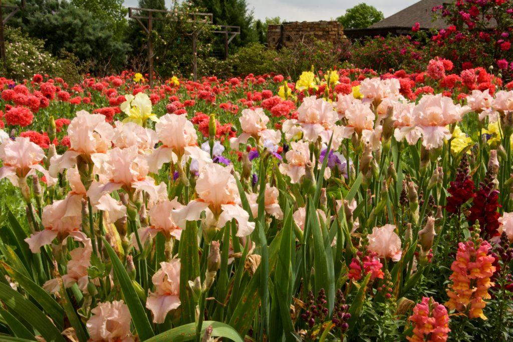 clark gardens 10