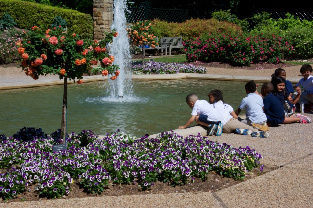 Ft Worth Botanical,  Rich Larson, Traveling Gardener
