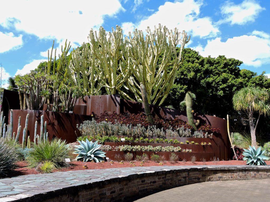 Succulent Garden, Royal Botanic Garden, Sydney Australia,