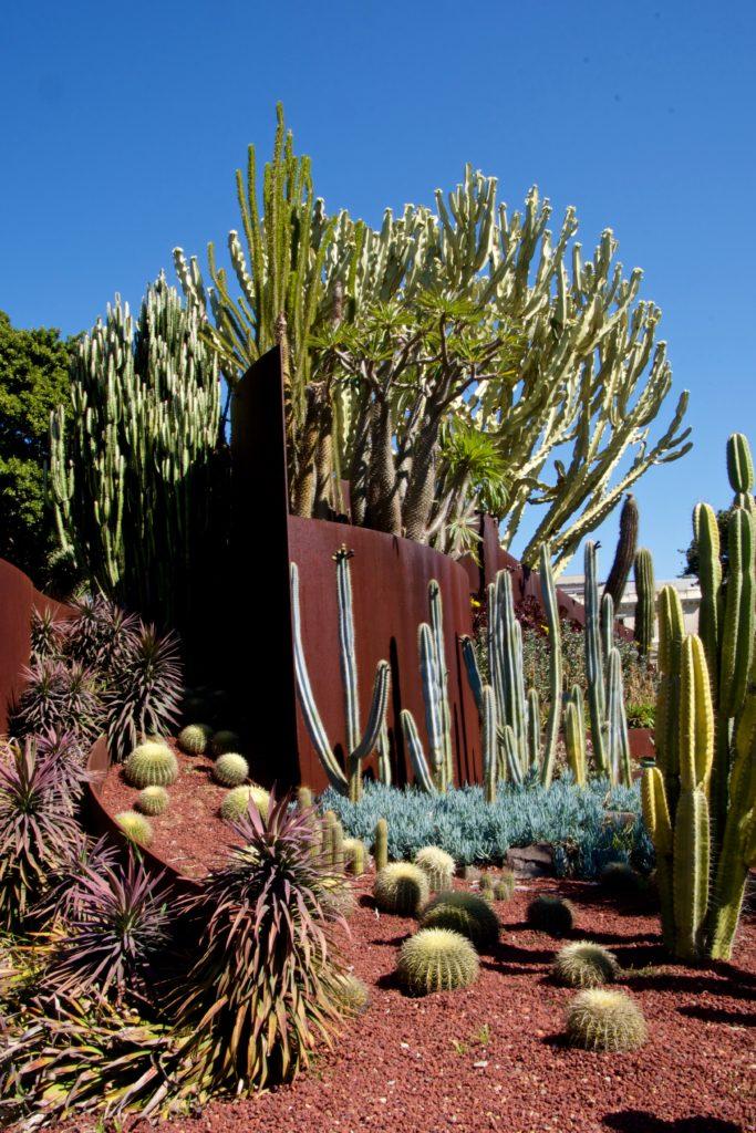 Succulent Garden, Royal Botanic Garden, Sydney, Australia
