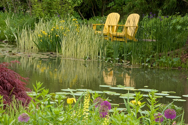 Yellow chairs with the flowers