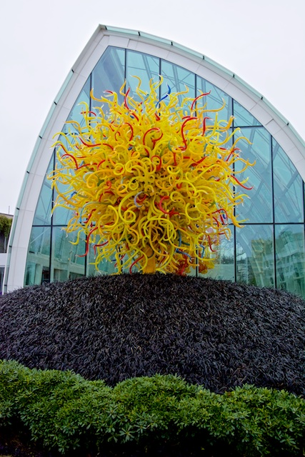 Artful Tree, with Glass House behind
