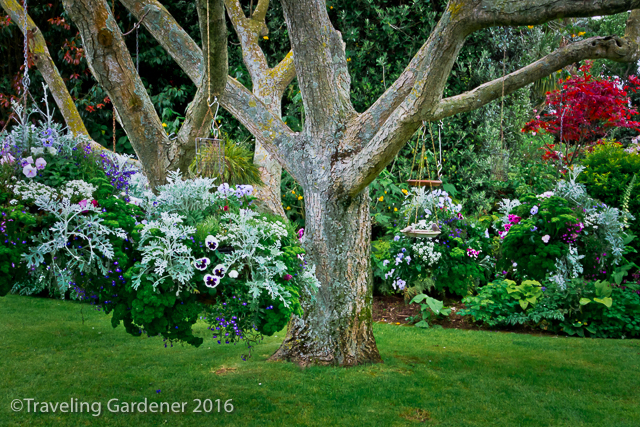 20161104oakley-garden3529