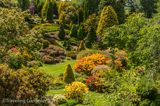 Maple Glen Garden