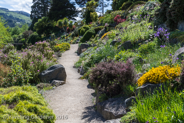 A sunny hillside garden