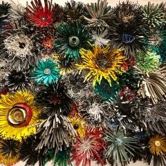 Michelle Stitzlein @ Dorrance Hall DBG, flowering hoses
