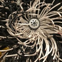 Michelle Stitzlein @ Dorrance Hall DBG, wires