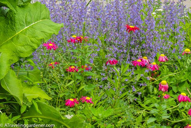 Christchurch Botanic Garden, NZS