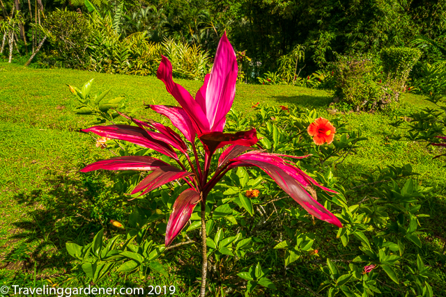 Sunnyside Garden, Grenada